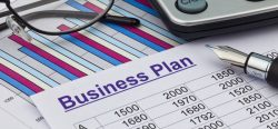 Business Plan – Big Picture or Micro Focus?